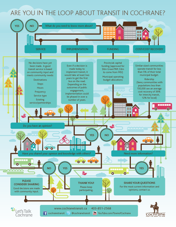 town of cochrane transit infographic flowchart by michelle atkinson