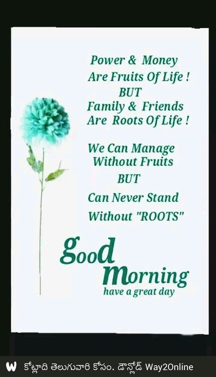 Pin By Daljeetkaurjabbal On Wise N Kind Good Morning Quotes Birthday Wishes For Son Gud Morning Wishes