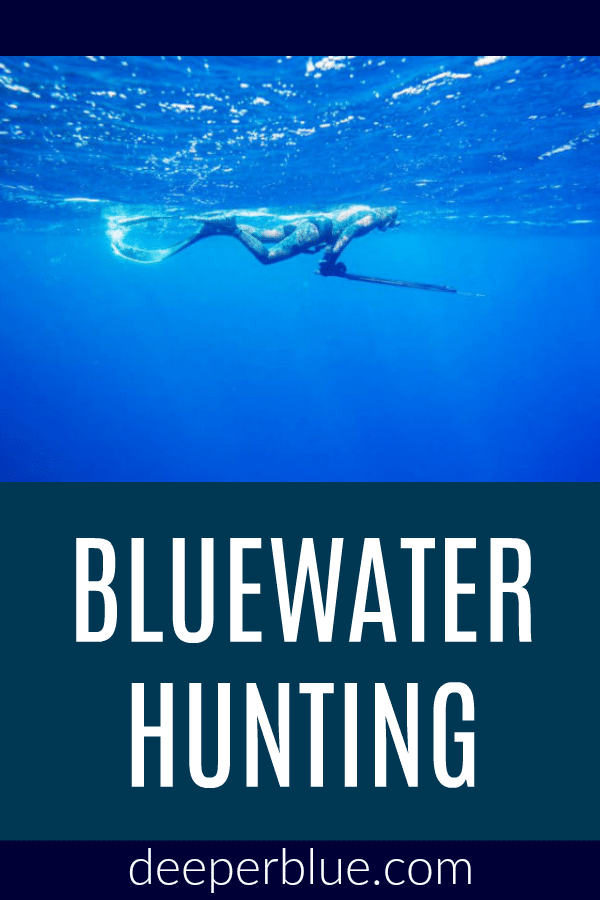 Hunting, Travel, Blue Marlin