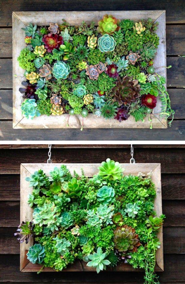 10 ideas para jardines verticales es complicado jard n for Macetas para muros verticales