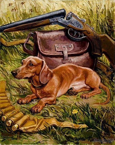 Sergei Pozniak Dachshund Little Hunter Dachshund Dog