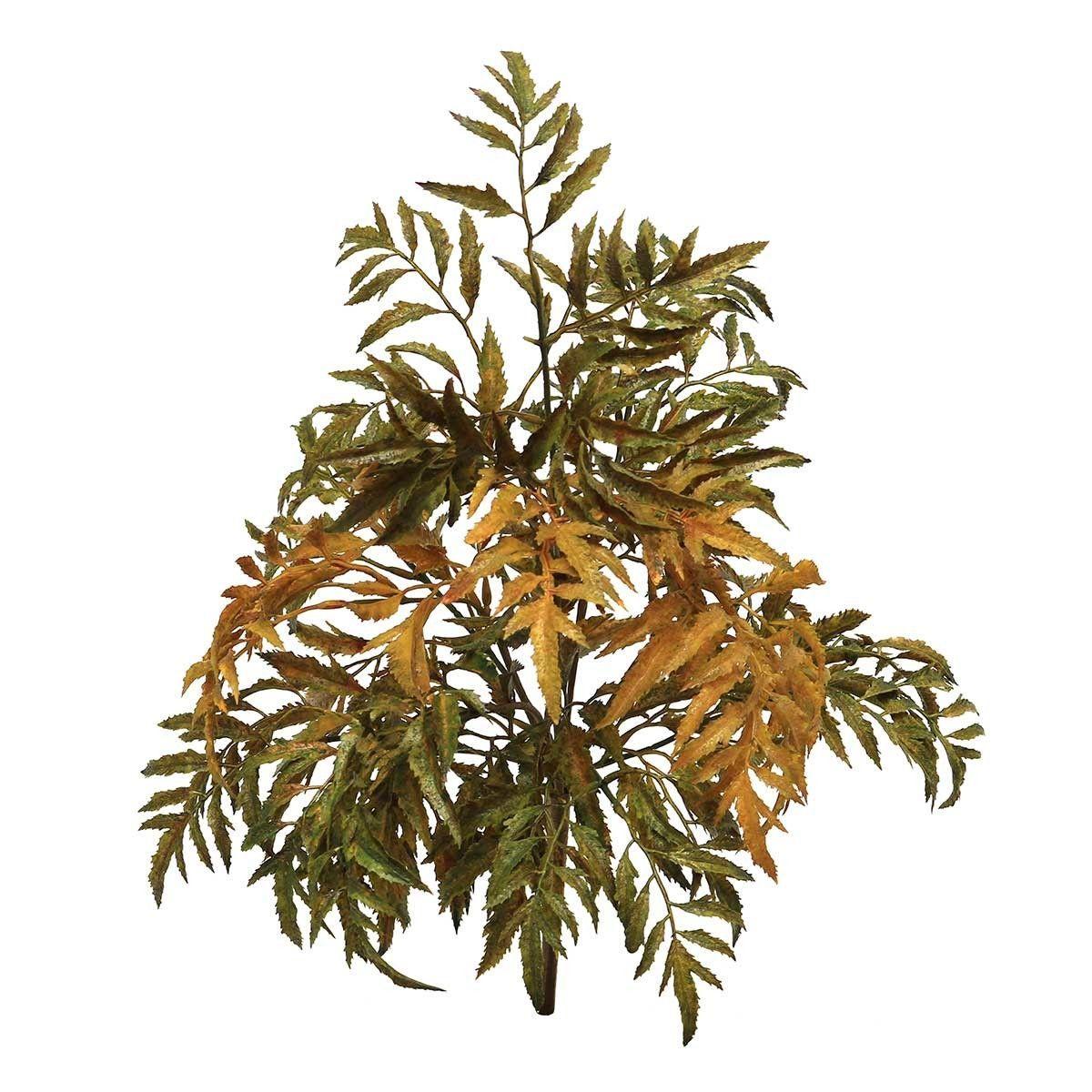 Silk Aralia Leaf Bush
