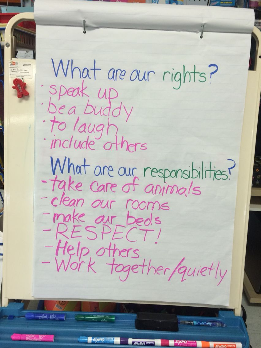 Rights and Responsibilities - first grade social studies When talking about  righ…   Social studies notebook [ 1136 x 852 Pixel ]