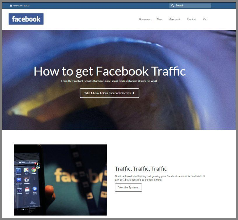 Fully Stocked Dropshipping Facebook Traffic Website Store 300