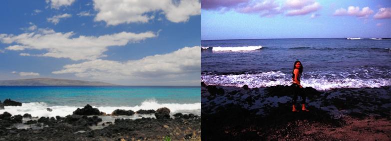 ĀhihiKīnaʻu Natural Area Reserve Coastal Lava Field