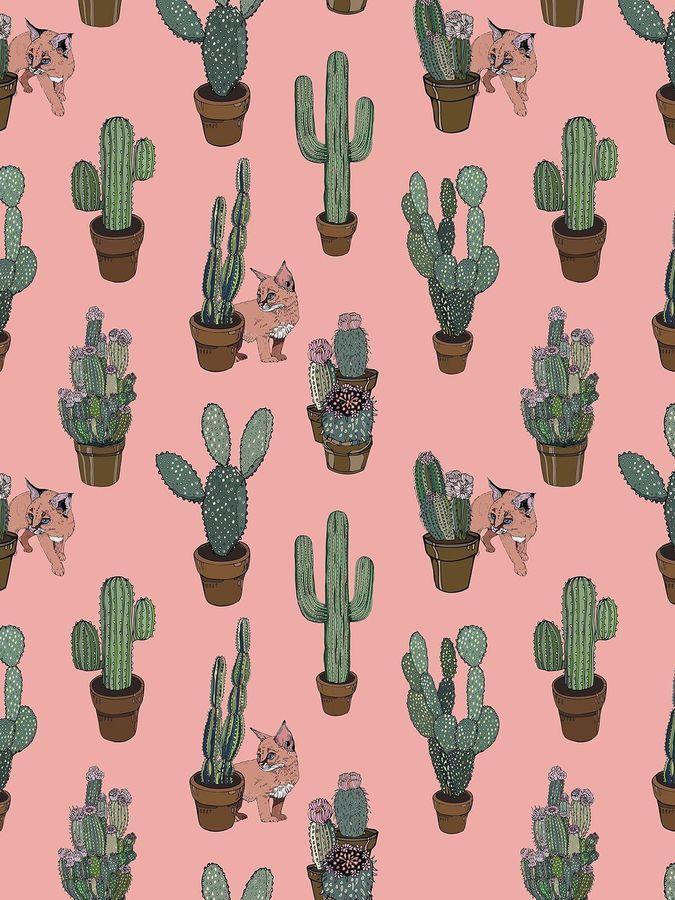 Silken Favours Peach Cactus Kitty Wallpaper In 2019