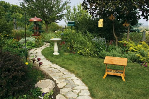 how to turn your backyard into a paradise
