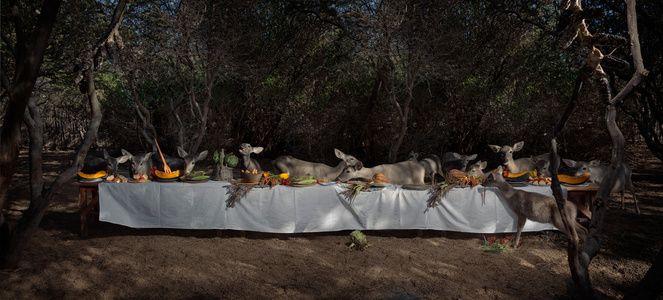 The Deer Feast, 2014