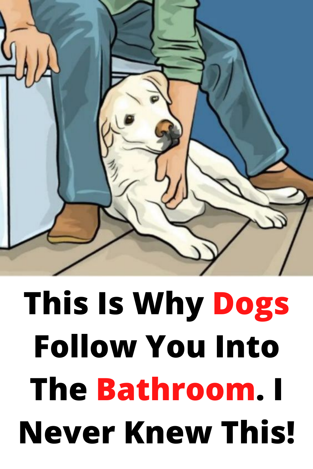 This Is Why Dogs Follow You Into The Bathroom I Never Knew This In 2020 Funny Prank Videos Crazy Funny Memes Wtf Funny