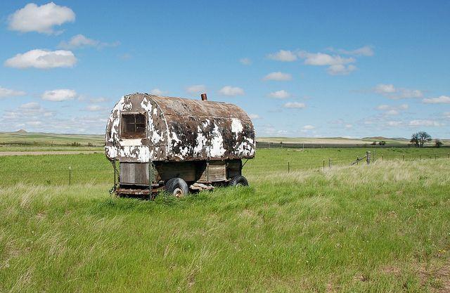 Sheep Wagon Wagon Sheep Old Wagons