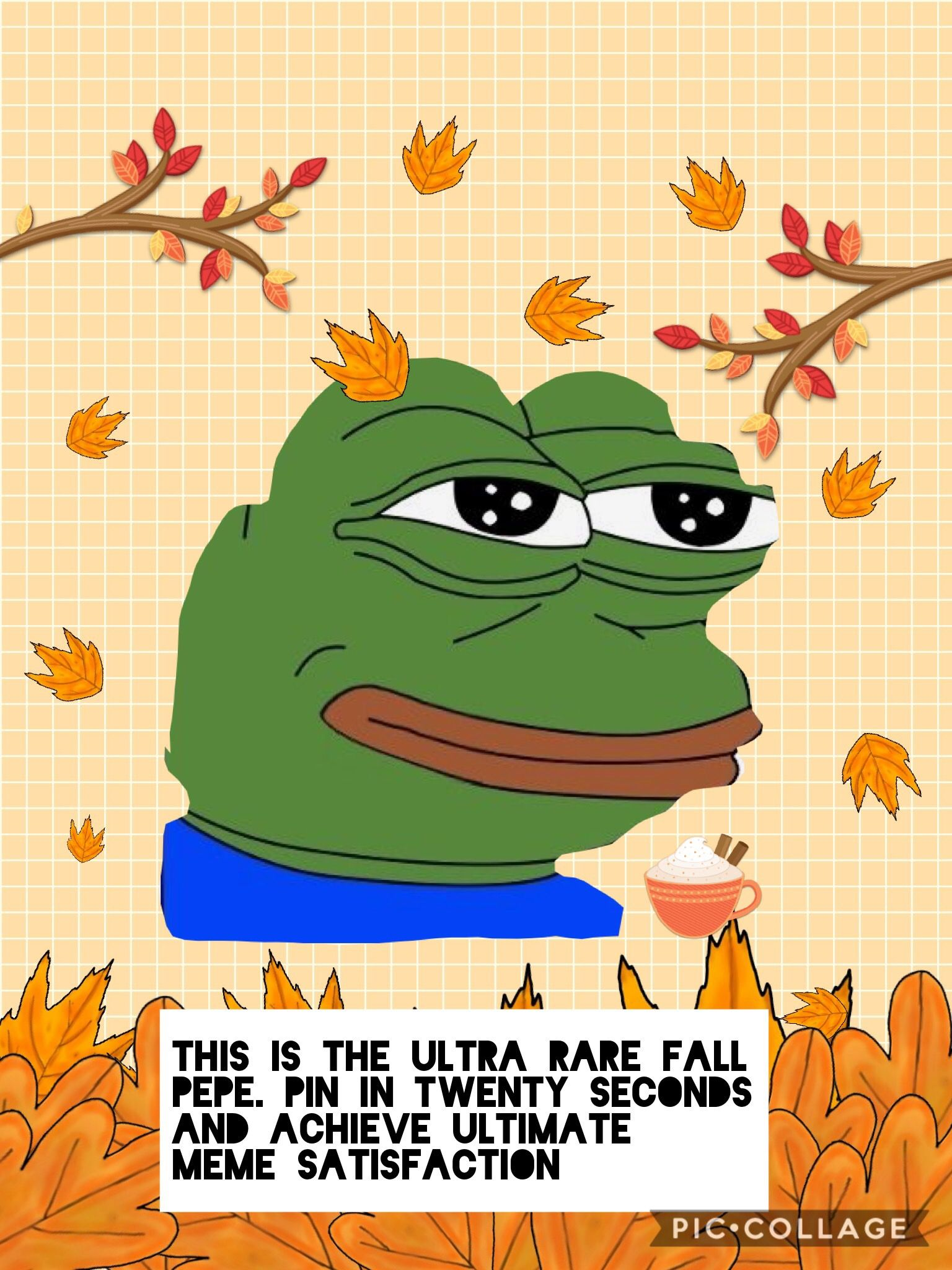 Pepe Memes For Discord