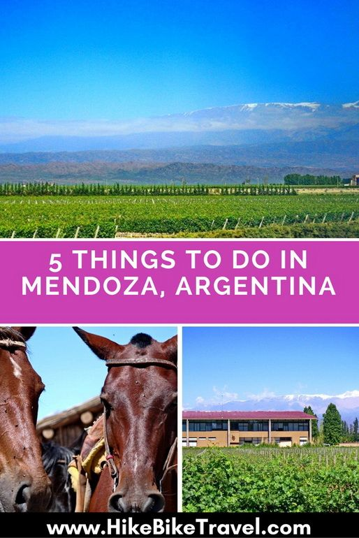 5 Things To Do In Mendoza Argentina Argentina Travel Latin