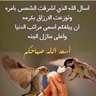 احلى كلامنا أسأل الله الذي اشرقت الشمس بأمره وتوزعت الارزاق بك Good Morning Arabic Good Morning Beautiful Morning Greetings Quotes