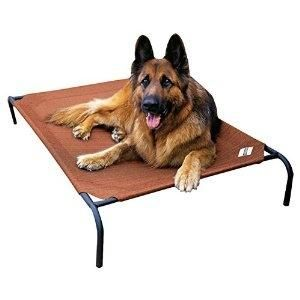 Diy Outdoor Dog Beds For Large Dogs House