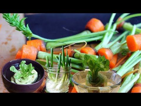 Youtube Growing Vegetables Regrow Green Onions Vegetables