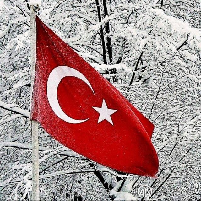 Albayragim Bayrak Turkiye Resim