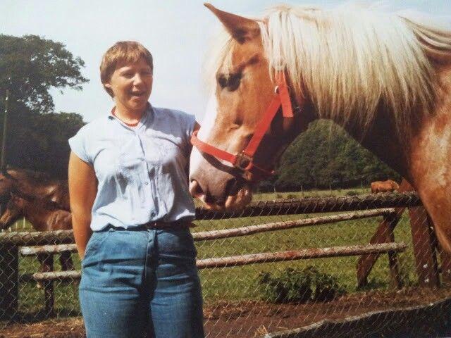 Lief paard plm 24 jr allebei