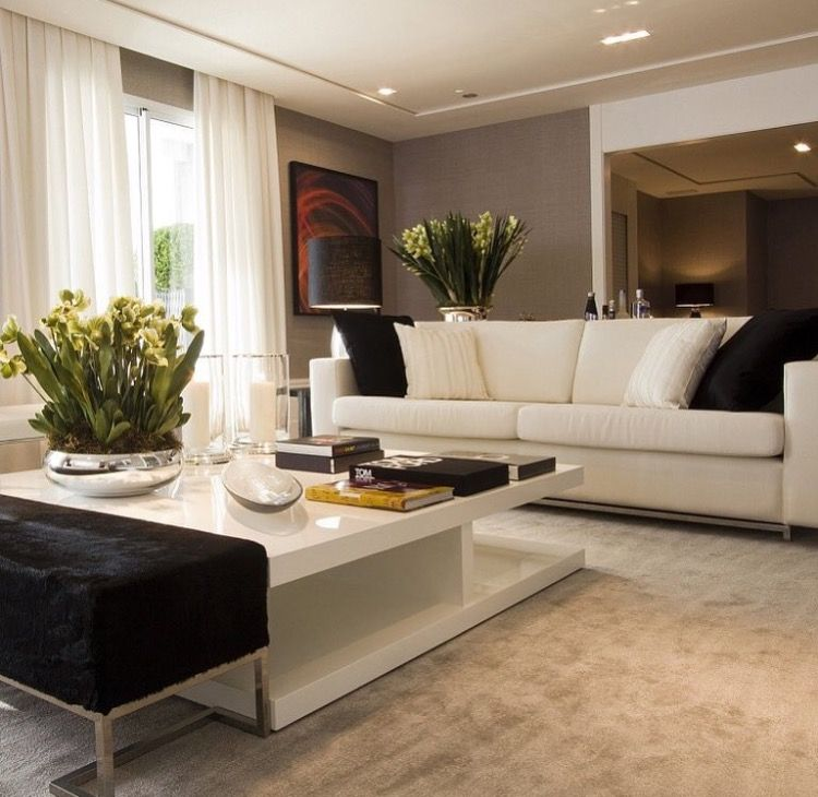 Traditional Decor Living Room Color Design Searching