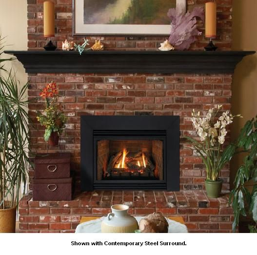 Medium Direct Vent Gas Fireplace Insert   Natural
