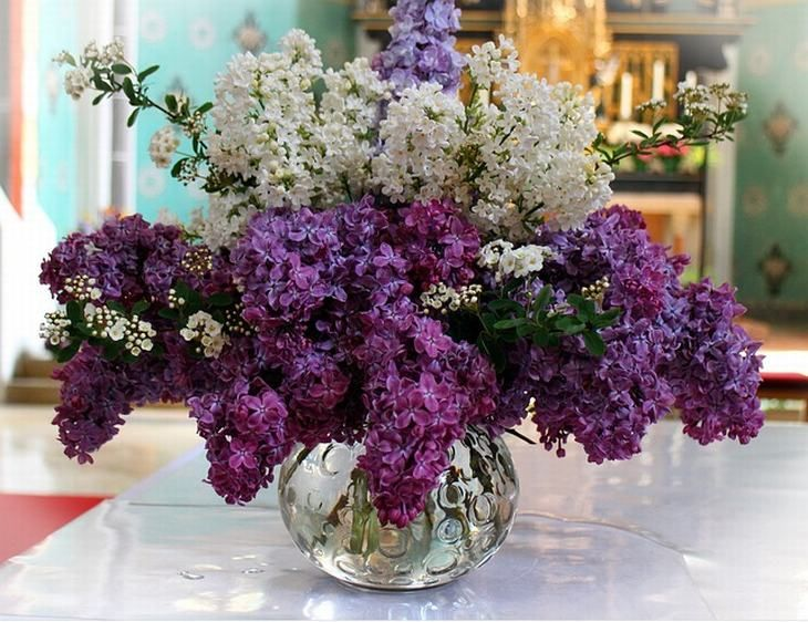 Learn How To Keep Your Flower Arrangements Fresh And Beautiful Lilac Bouquet Flowers Lilac