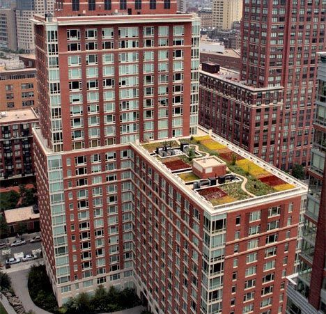 Green Roofs On Apartment Buildings