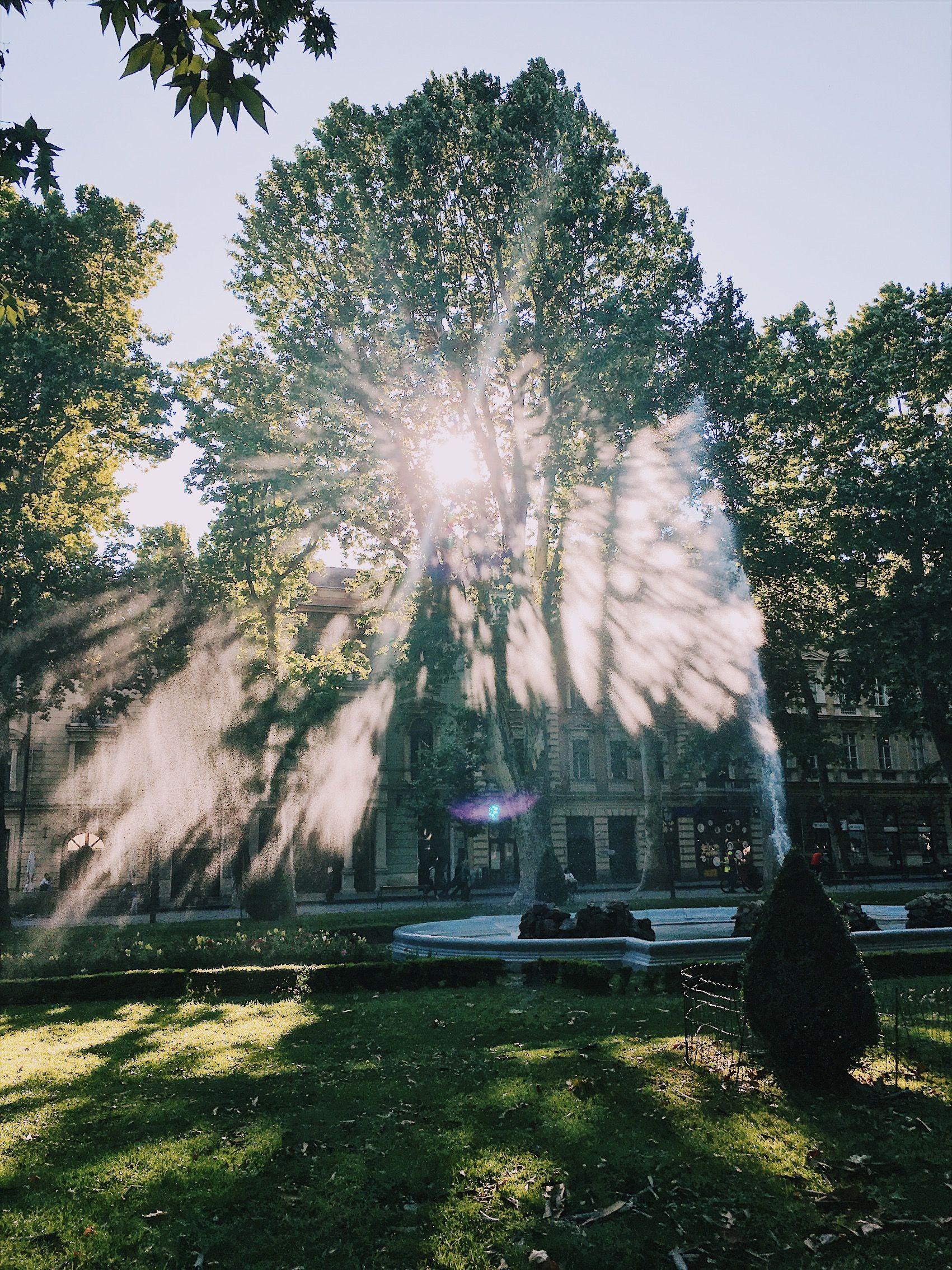 Zagreb Kroatien Licht Light Gegenlicht Sonne Wasser Park Mit Bildern Zagreb Kroatien Kroatien Zagreb