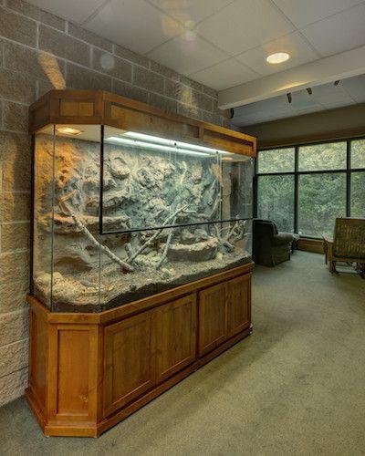 "Exhibit ""Rattle Snake Terrarium"""
