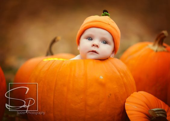 1000 images about thanksgiving photo ideas on pinterest
