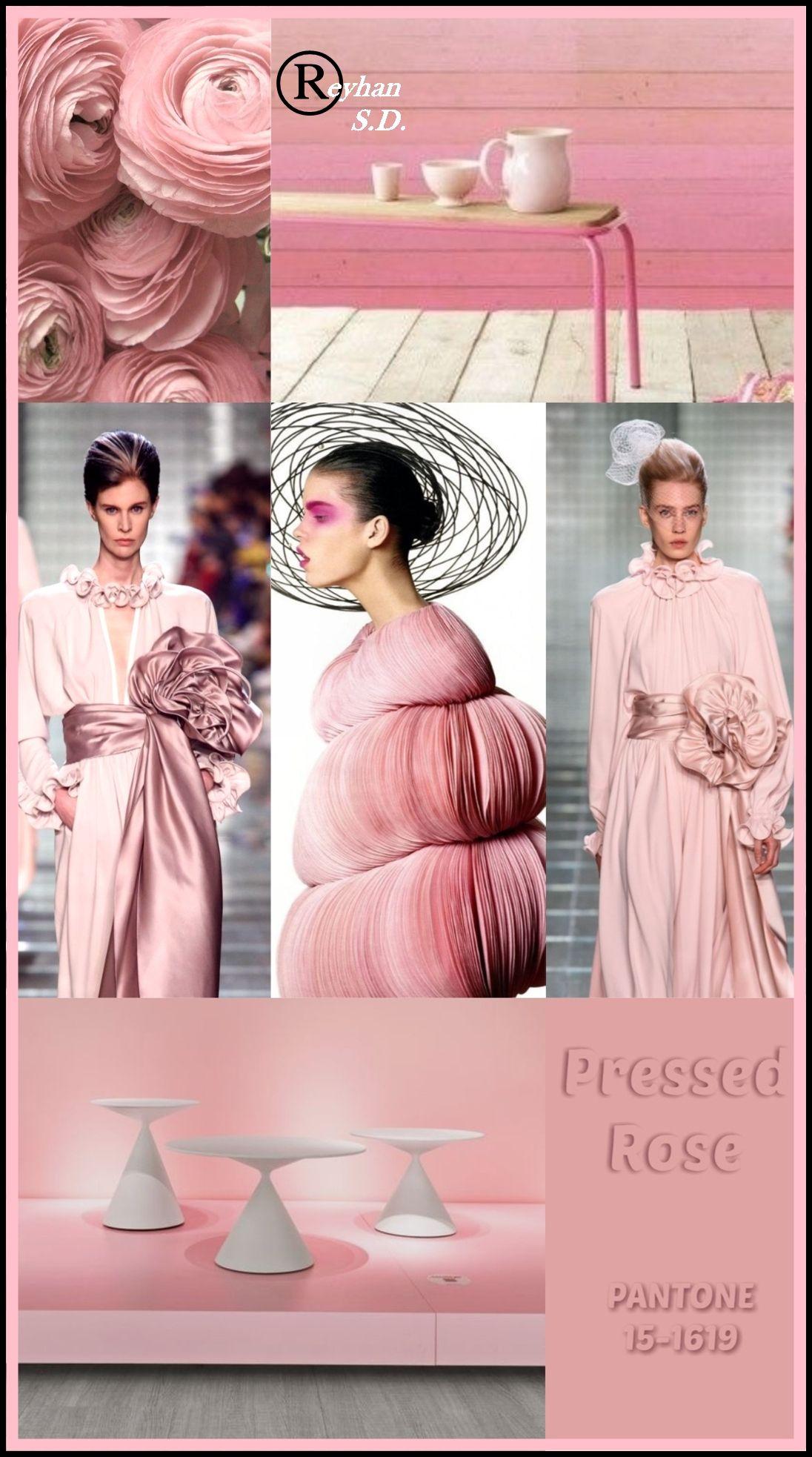 '' Pressed Rose - Pantone Spring/ Summer 2019 Color '' by Reyhan S.D.