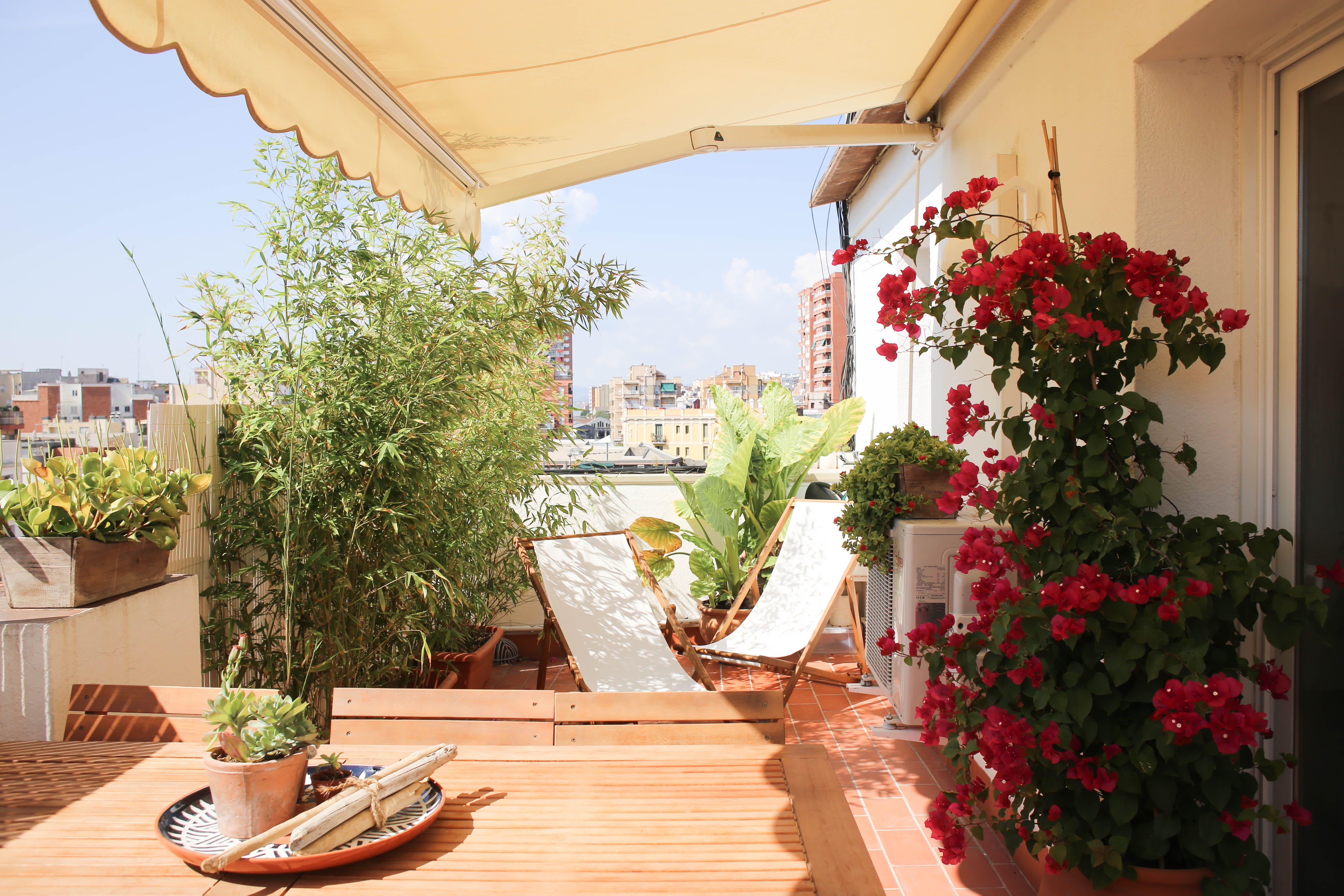 Organic Minimal Meets The Mediterranean Way Of Life In Barcelona