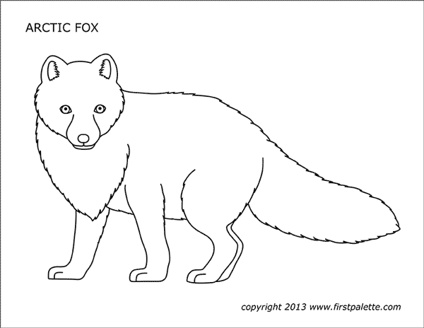 Arctic Fox Free Printable Templates Coloring Pages Firstpalette Com Fox Coloring Page Fox Pictures Pet Fox