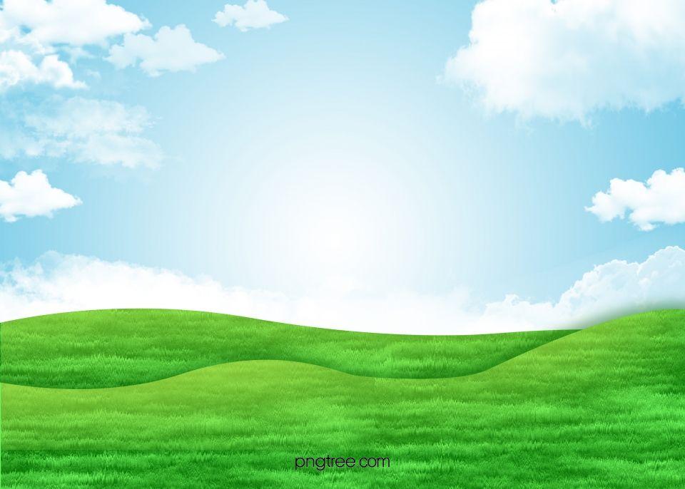 Sky Green Grass Background Landscape Background Green Grass