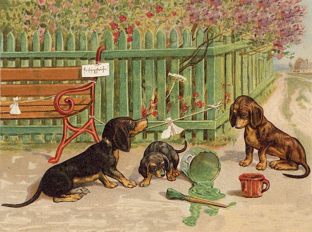 Dachshund Charming Dog Greetings Note Card Cute Dogs Play With