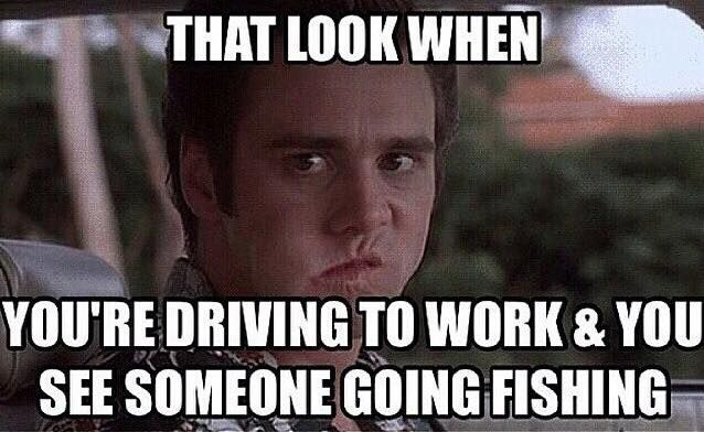 Funny Fishing Memes Part 1 Respect The Fish Funny Fishing Memes Fishing Humor Fishing Memes
