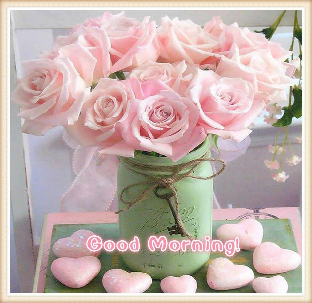 Pink Good Morning Flowers Everyday Pinterest Flowers Pink