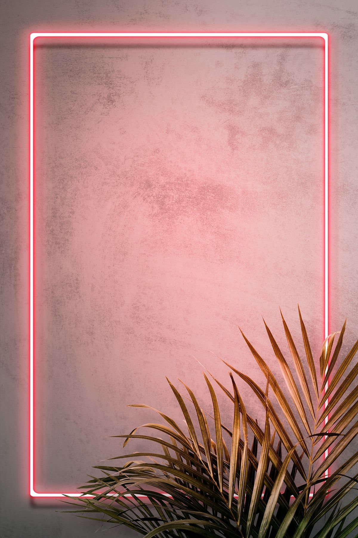 Download premium illustration of Pink neon frame on a wall ...