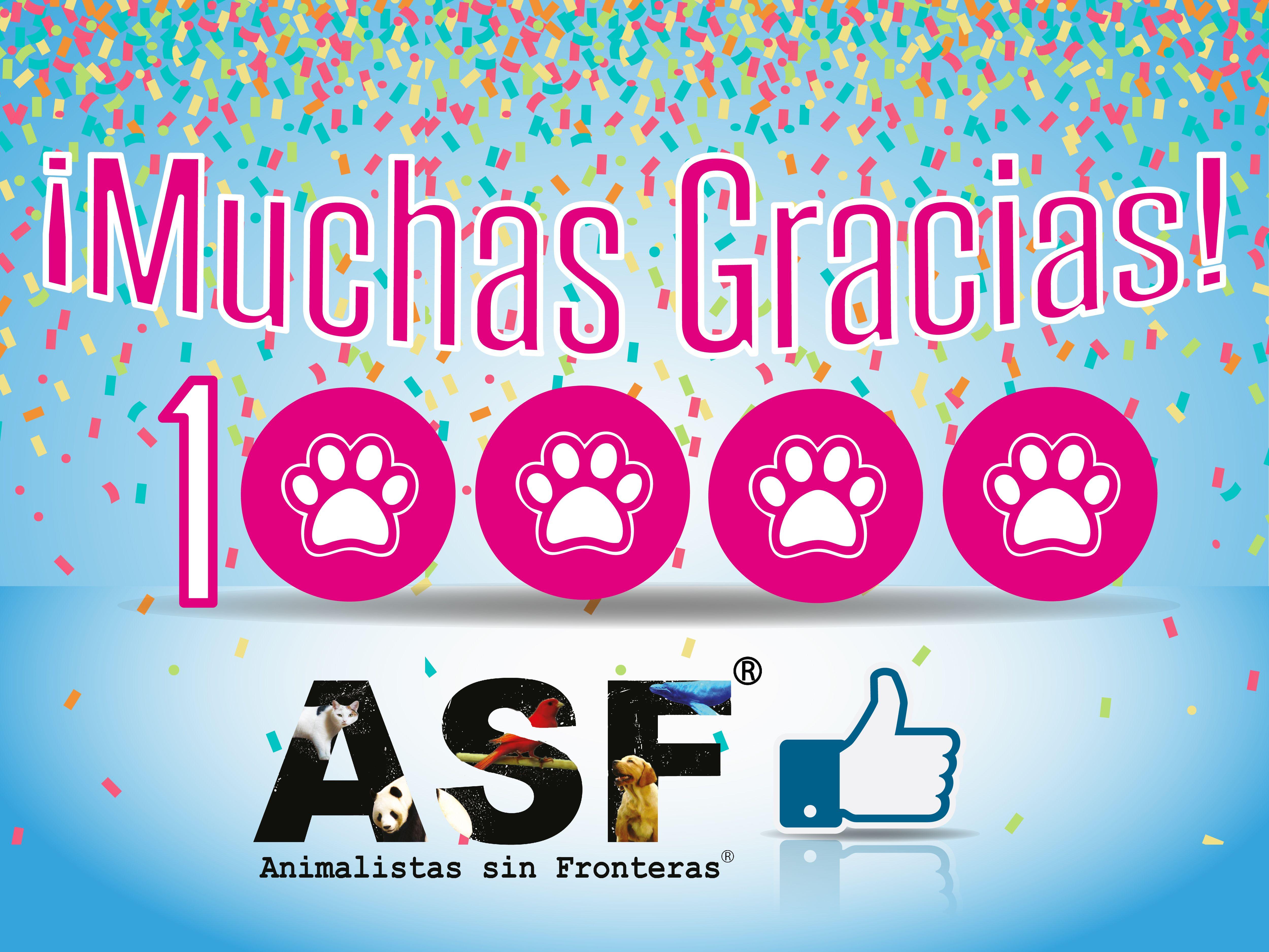 Diseño de post para #Facebook de ASF - Animalistas sin Fronteras ...
