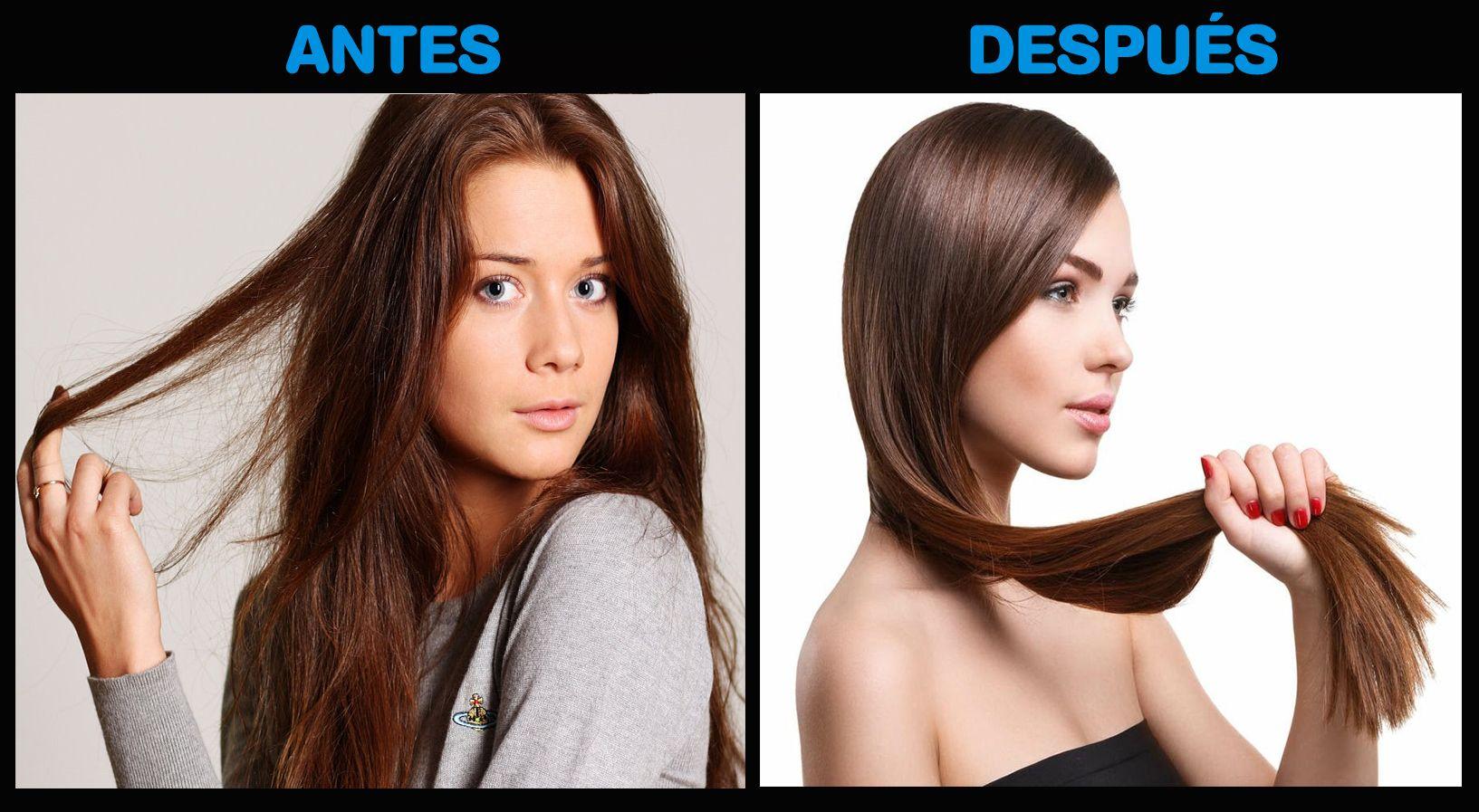 saldar peor Inspirar  Beneficios del vinagre de manzana para el cabello | Manzanilla para el  cabello, Beneficios del vinagre de manzana, Tratamiento casero para el  cabello
