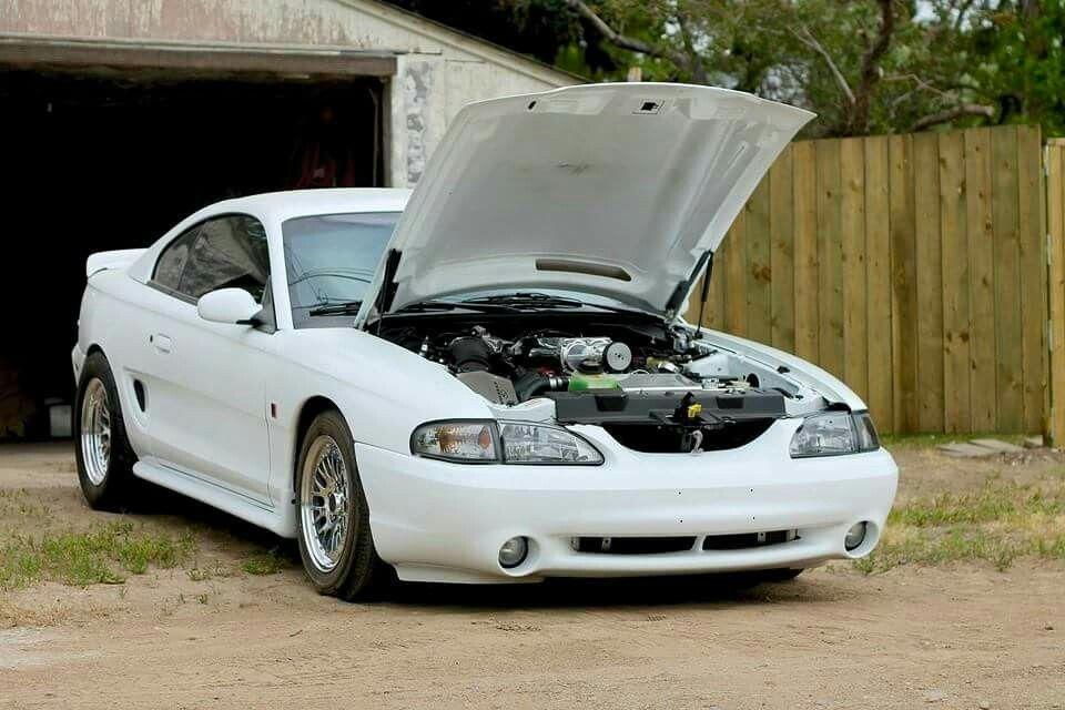 Cobra Supercharged Mustang Cobra Sn95 Mustang Mustang Cars
