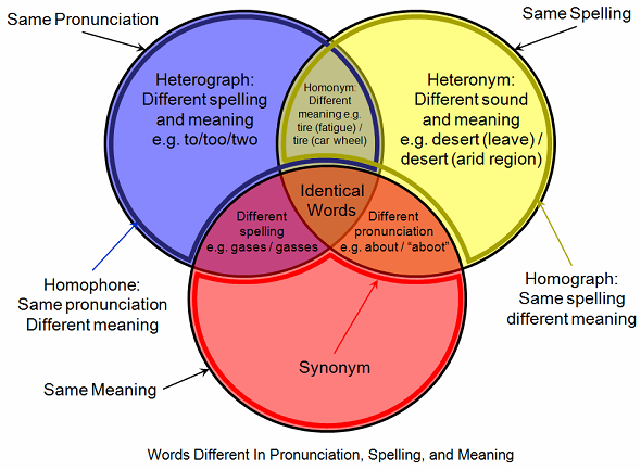 3 Circl Venn Diagram Png 590 433 Homophones Homographs Same Word Different Meaning