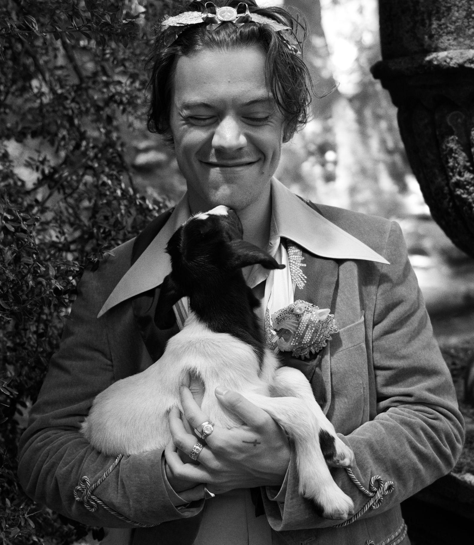 Harry Styles entre bebés animales (y para Gucci) viene para mejorar tu martes #boys