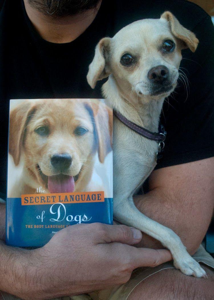 Doggy Talk Dog books, Doggy, Dog puzzles