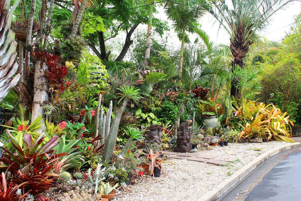 Private Tropical Style Garden In Brisbane Tropical Garden Design Rock Garden Landscaping Tropical Garden