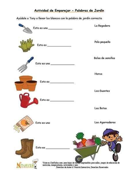 Hoja+de+trabajo+para+los+niños+para+probar+su+conocimiento+de+ ...