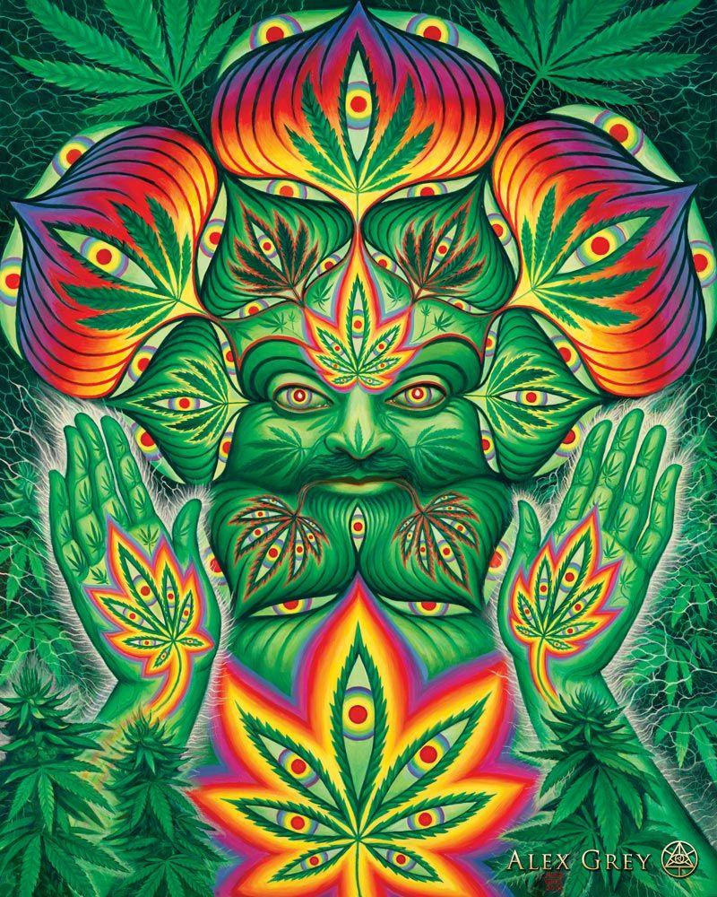 Super Psychedelic Spirit Paintings, Alex Grey Art Gallery | Alex grey  MA96
