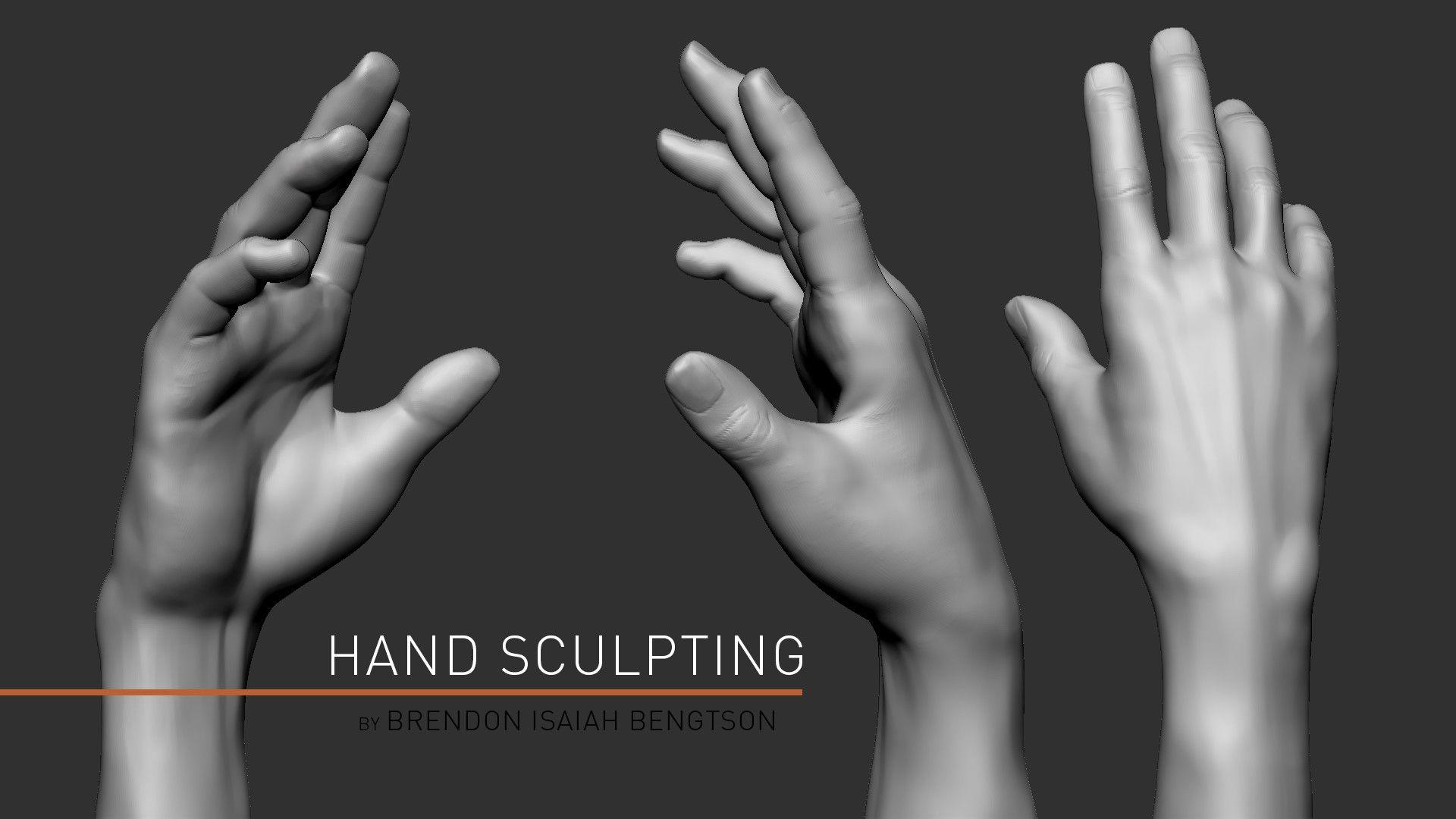 ArtStation - ZBrush Anatomy Sculpting: Hands, Brendon Isaiah ...