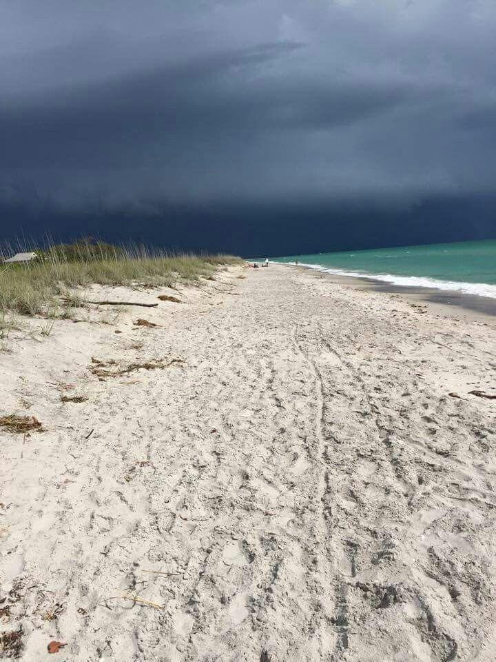 Stump pass beach state park. Englewood, fl. | Florida ...