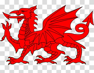 Red Dragon Illustration Flag Of Wales Uther Pendragon Welsh Dragon Western Dragon Transparent Background Png Dragon Illustration Red Dragon Dragon Tattoo Ink