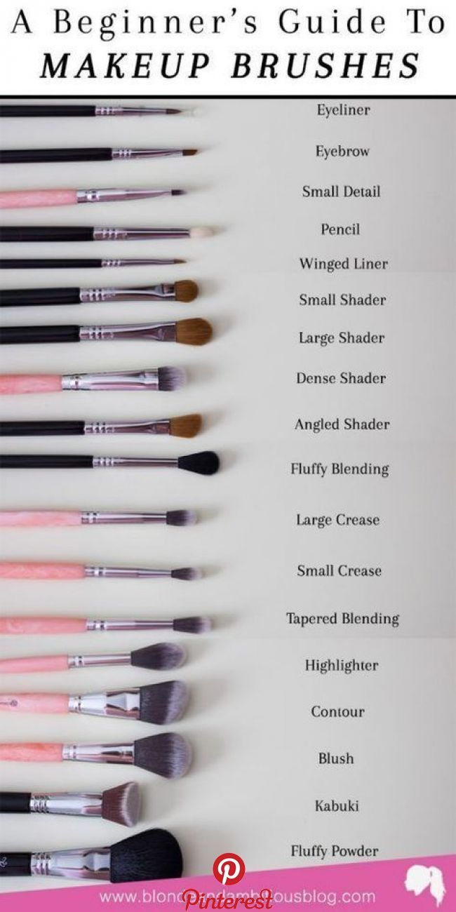 Photo of Makeup Brush Breakdown Happy Tuesday everyone!!! SO. Today's post is technical…