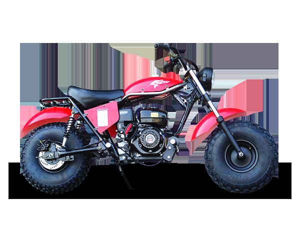 Trailmaster Monster Dog Ii Mini Bike 6 5hp With Torque Converter